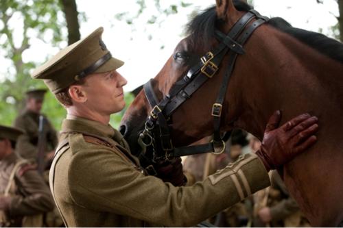Tom Hiddleston, War Horse